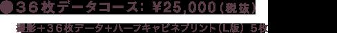 36枚データコース: ¥25,000(税抜)