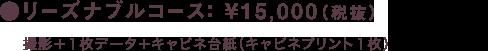 リーズナブルコース: ¥15,000(税抜)