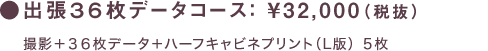 出張36枚データコース: ¥32,000(税抜)